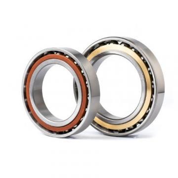 BUNTING BEARINGS BSF606814  Plain Bearings